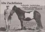 Alte Zuchtlinien - Hintergrund über Pferdezucht in Island